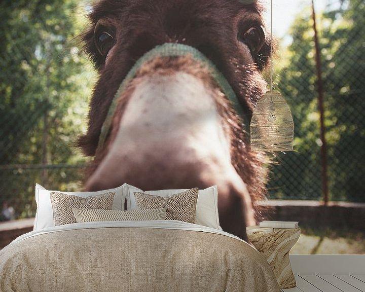 Sfeerimpressie behang: Close-up van een ezel van Atelier Liesjes