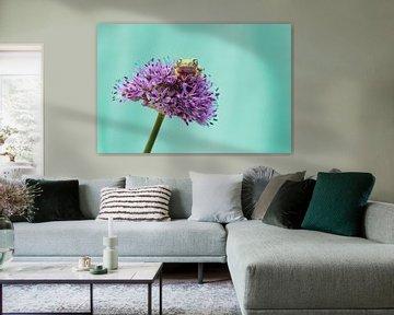 Pretty purple von Joyce Beukenex