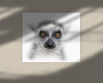 Look me in the eyes von Ron Meijer Photo-Art