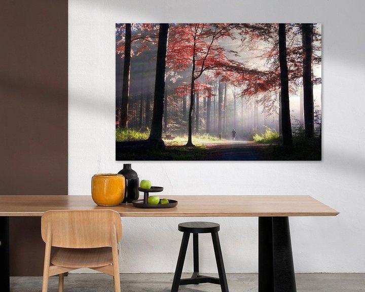 Sfeerimpressie: The art of light van Bart Ceuppens