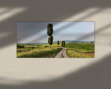 Gladiator's road von Bart Ceuppens