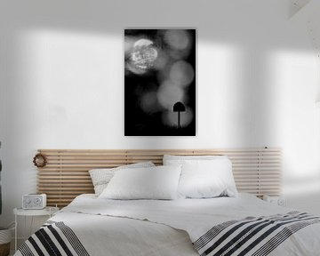Silhouet van een klein paddenstoeltje von Simon Hazenberg