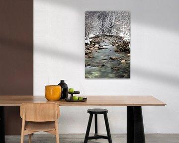 Silent Water van Sander van Mierlo