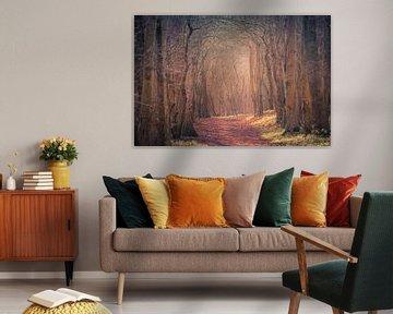 Mysterieus bos van Roland van Tilborg