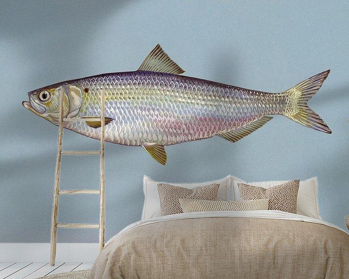 Sfeerimpressie behang: Alosa aestivalis (Blueback herring) van Fish and Wildlife