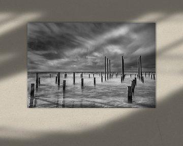 Palendorp Petten in de zee, zwart-wit
