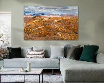 Herfst in Colorado van M. Cornu