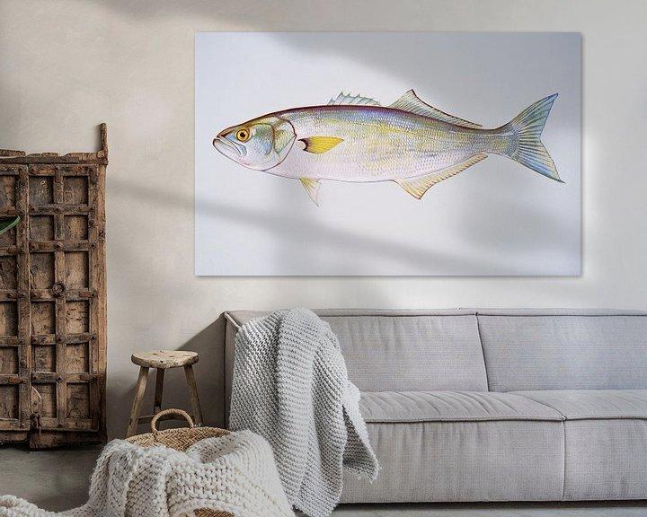Sfeerimpressie: Blauwbaars  (Bluefish) van Fish and Wildlife