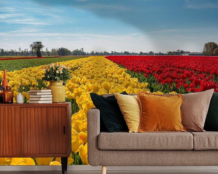 Sfeerimpressie behang: Gele en rode tulpenveld, Lisse, , Zuid-Holland, Nederland van Rene van der Meer