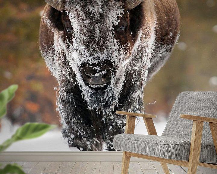 Sfeerimpressie behang: Amerikaanse bizon van Caroline Piek