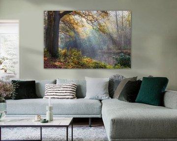 Immobilien Marlot den Haag, Niederlande von Elly van Ballegooijen