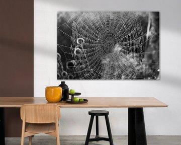 Schönes Spinnennetz in schwarz-weiß von Patrick Verhoef