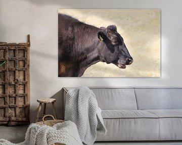 Dutch Cow van Erwin Delsman