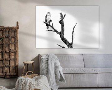 Vechtarend zwart-wit fotografie van Lotje Hondius