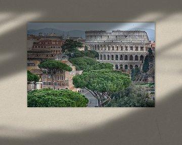 Colosseum of Rome van Joachim G. Pinkawa