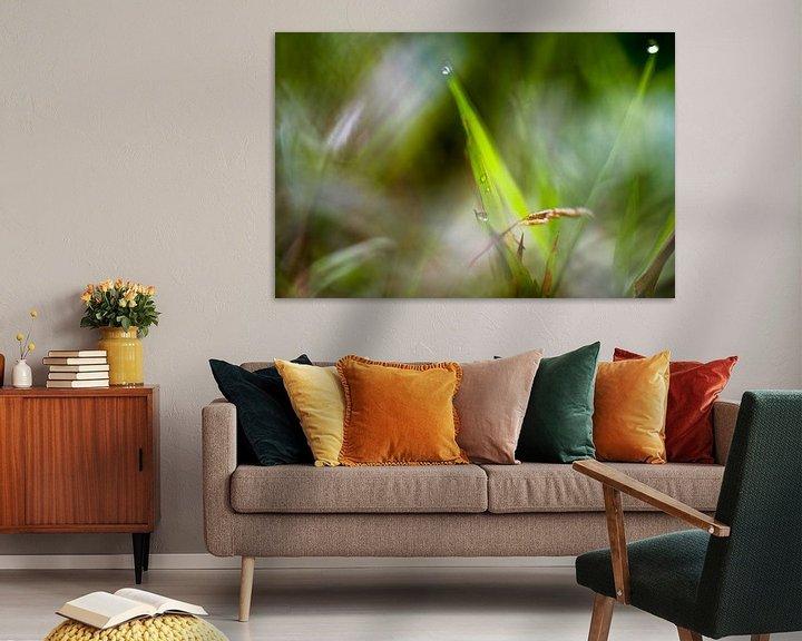 Sfeerimpressie: Macrofotografie gras van angelique van Riet