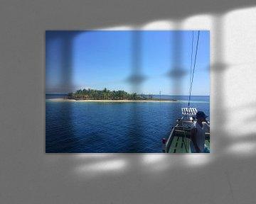 Robinson's island van Christine Volpert
