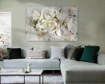 Roses blanches sur Yvonne Blokland