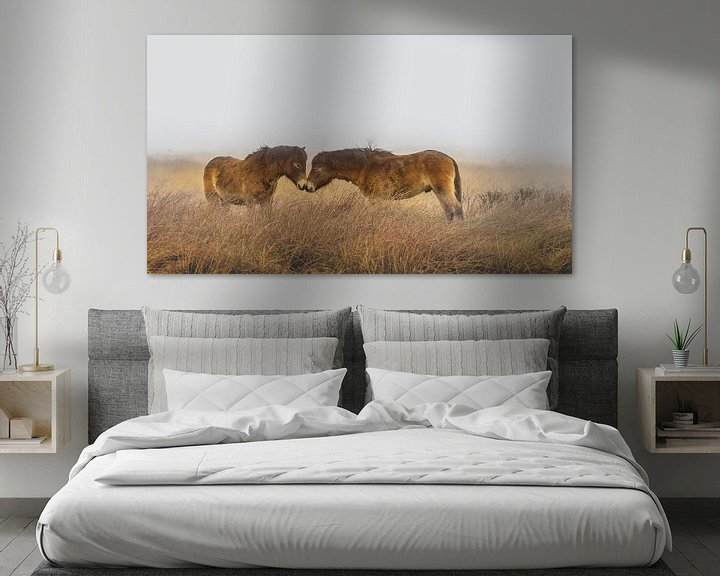 Sfeerimpressie: Paarden in de mist van Martzen Fotografie