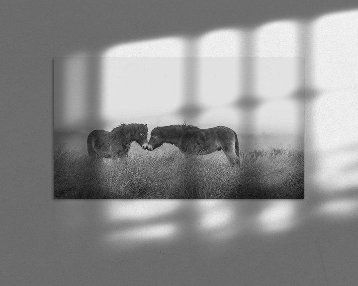 Sfeerimpressie: Paarden in de mist (BW) van Martzen Fotografie