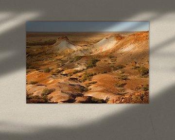 Painted desert van Antwan Janssen