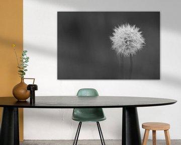 Een alleen staande bloem von Bjorn Dockx