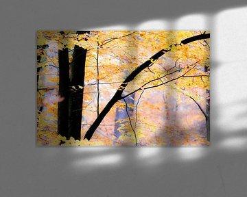 Bunter Herbstwald.