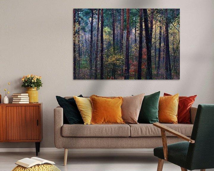 Sfeerimpressie: Kleurrijk herfstbos van Mark Scheper
