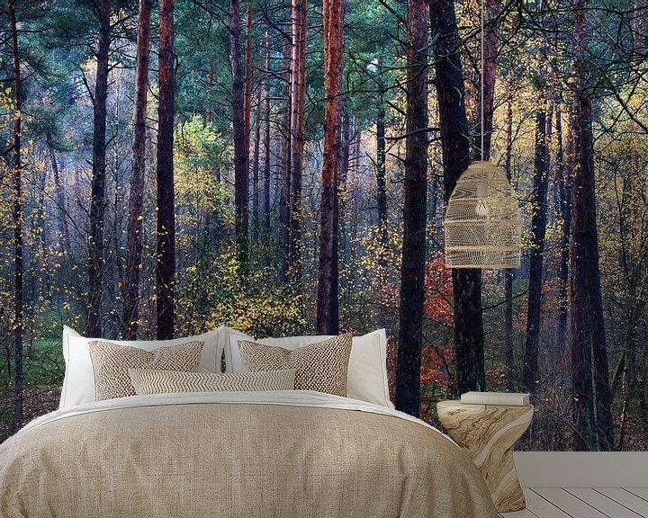 Sfeerimpressie behang: Kleurrijk herfstbos van Mark Scheper