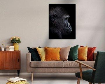 The Young Gorilla Boy von Ron Meijer Photo-Art