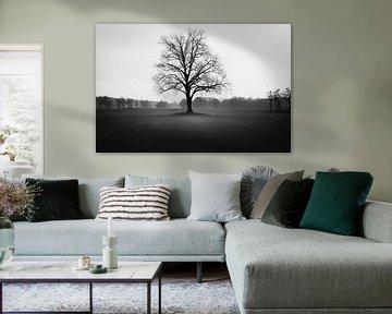 Eenzame boom von Eric Andriessen
