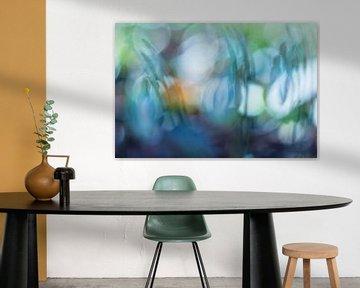 Color splash von Esther Smit-Branderhorst
