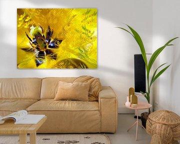 Coeur de tulipe jaune von Christine GUILLET