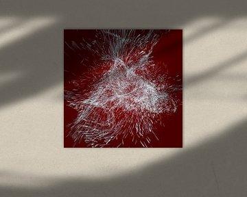 Koud Phoenix van Jörg Hausmann