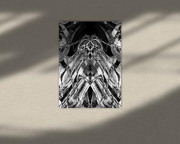 BLACK & WHITE CURIOSITY v3 van Pia Schneider