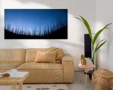 Verbrand bos von Fotografie door Menno