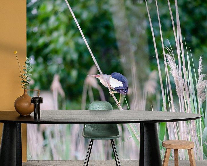 Beispiel fototapete: Prachtvogel selten (Waldaffe) von Jorg van Krimpen