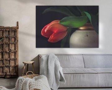Hängende rote Tulpe auf einem klassischen Vase von Gerrit Veldman