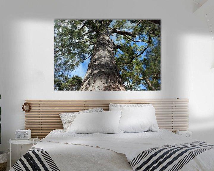 Sfeerimpressie: Kijk omhoog in deze boom van Ingrid Meuleman