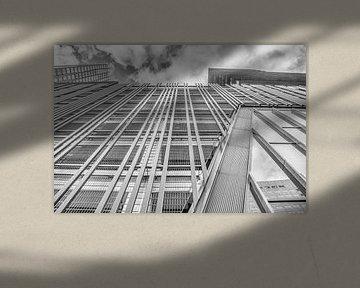Wolkenkrabber van Julienne van Kempen