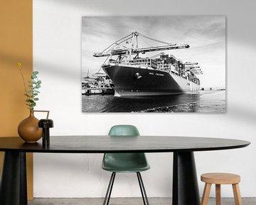 MOL Triumph containerschip in zwartwit von de buurtfotograaf Leontien