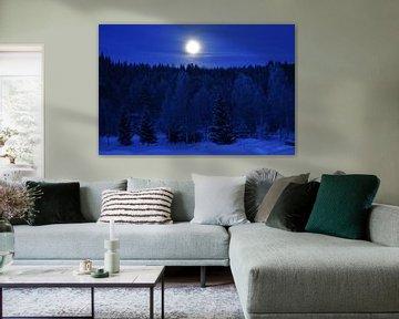 Maan in sneeuwlandschap van M M
