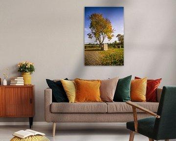 Warme herfstboom in Frankrijk van Martin Frunt