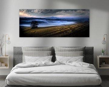 Toscaans landschap......... van Wim Schuurmans
