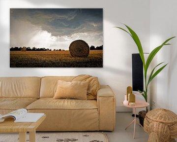 Toscaans landschap..... van Wim Schuurmans