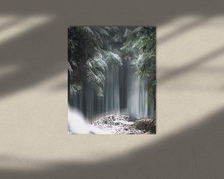 Sfeerimpressie: Magic trees of Belgium van Bryan Venken