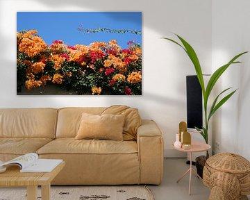 Blumen von Anouk Davidse