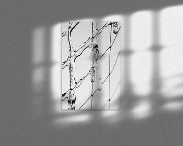 Netzeis von Jörg Hausmann