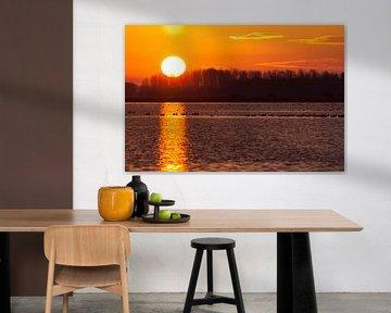 Gouden zon op het Lauwersmeer
