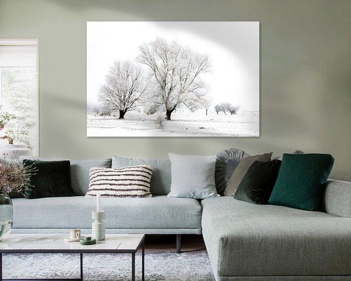 Sfeerimpressie: Winter wonderland in de Kollumerwaard van Ron ter Burg